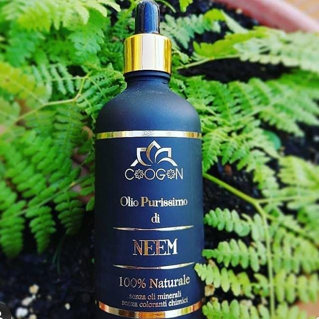 miglior-olio-di-neem