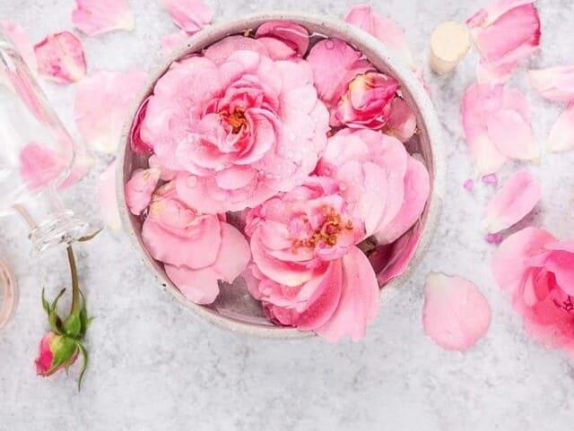 Tonico-acqua-di-rose